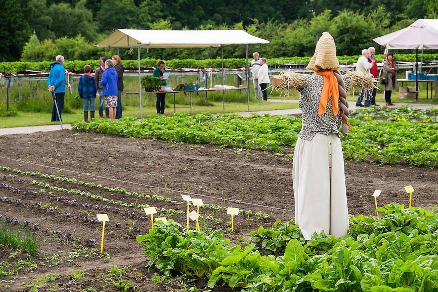 Nederland, Scherpenzeel, 20 juni 2015<br /> Open dag op biologische bedrijven. Lekker naar de Boer.  Door he hele land zijn veel biologische bedrijven open voor publiek. Er zijn informatiestands, rondleidingen, proeverijen. <br /> Biologisch bedrijf 't Paradijs. <br /> Foto: Michiel Wijnbergh