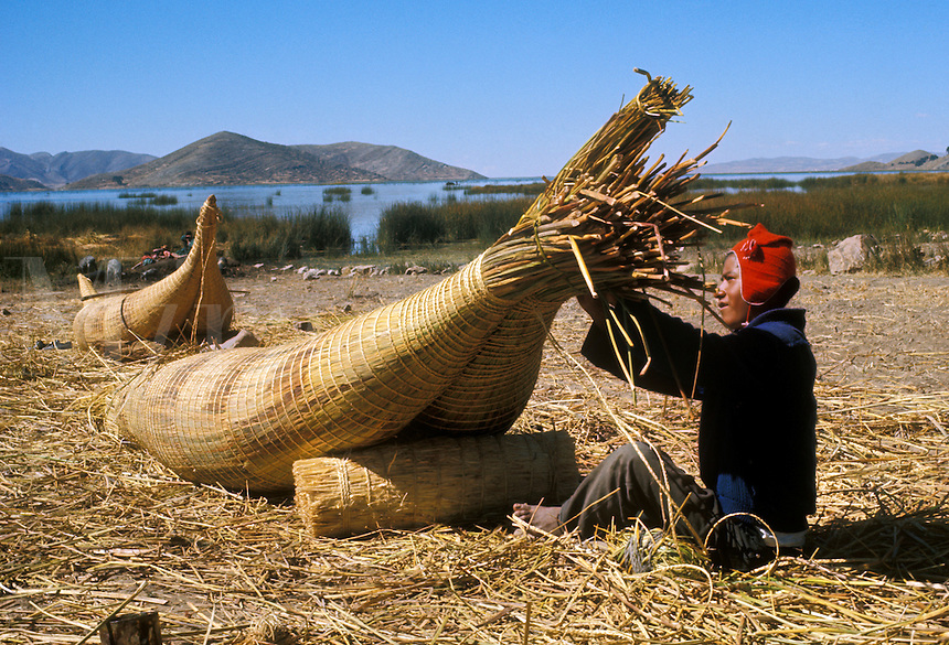 Aymara Indian fisherman making reed raft called  balsa de totora, on Suriqui Island, Lake Titicaca, Bolivi