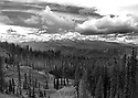 Scenery at Blewett Pass, WA in black and white featuring mountain range, forest, snow, sky and clouds in the Wenatchee Mountains. Stock photography by Olympic Photo Group