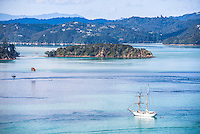 Sailing boat in the Bay of Islands seen from Russell, Northland Region, North Island, New Zealand