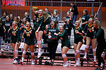 November 22, 2019; Rapid City, SD, USA; Northwestern bench reacts vs. Faulkton Area at the 2019 South Dakota State Volleyball Championships at the Rushmore Plaza Civic Center in Rapid City, S.D. (Richard Carlson/Inertia)