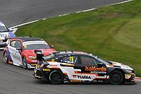 2019 British Touring Car Championship. Race 3. #25 Matt Neal. Halfords Yuasa Racing. Honda Civic Type R.