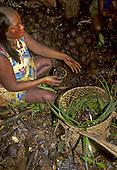 A - Ukre Village, Xingu, Brazil. Kayapo woman harvesting brazil nut.