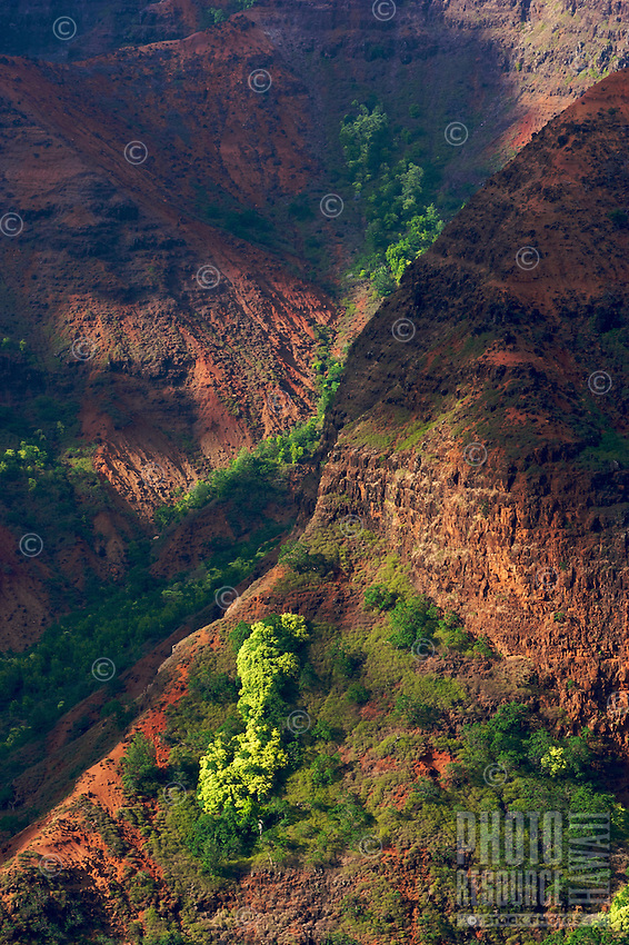 The red dirt and greenery of Waimea Canyon on Kauai is highlighted by dappled light.
