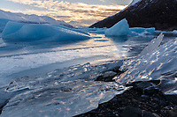 Ice bergs frozen in Knik Lake at Knik Glacier.  chugach Mountains.  Winter   Southcentral, Alaska
