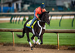 LOUISVILLE, KENTUCKY - MAY 02: Win Win Win prepares for the Kentucky Derby at Churchill Downs in Louisville, Kentucky on May 01, 2019. Evers/Eclipse Sportswire/CSM