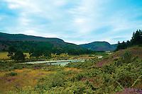 The River Feshie, Glen Feshie, Cairngorm National Park