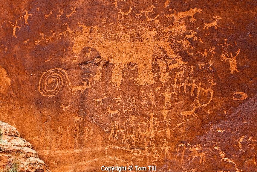 Complex petroglyph panel, Proposed La Sal Waters Wilderness, Utah