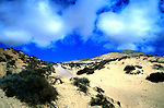 Sand dunes, Playa de Sotavento de Jandia, Fuerteventura, Canary Islands, Spain