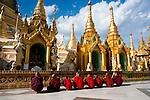 Asia, Myanmar, Yangon. Golden stupa of Shwedagon Pagoda