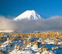 Mount Ngauruhoe and winter  snow covering tussock in Tongariro National Park-New Zealand