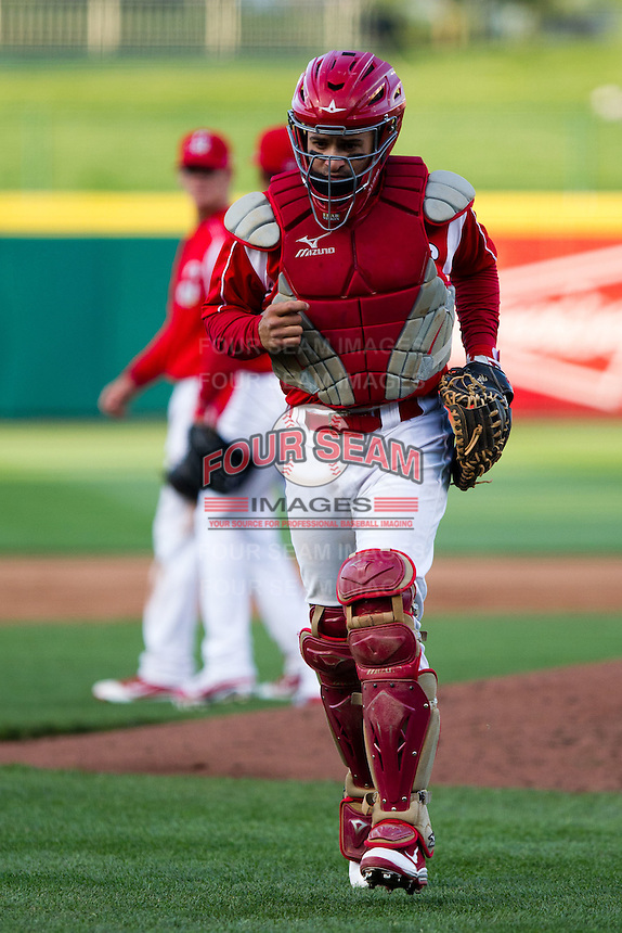 Nick Derba (31) of the Springfield Cardinals walks back to the plate during a game against the Frisco RoughRiders on April 16, 2011 at Hammons Field in Springfield, Missouri.  Photo By David Welker/Four Seam Images
