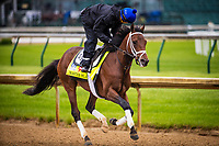 LOUISVILLE, KY - MAY 04: Master Plan gallops at Churchill Downs on May 04, 2017 in Louisville, Kentucky. (Photo by Alex Evers/Eclipse Sportswire/Getty Images)