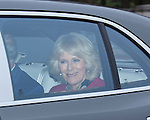 """19.12.2012, London: QUEEN'S CHRISTMAS LUNCH .Camilla, Duchess of Cornwall arrives for the annual Christmas Luncheon given by the Queen at Buckingham Palace..Other royals attending included Kate, Prince William, Princess Beatrice, Princess Eugenie, Princess Michael and Lady Helen Windsor..Mandatory credit photo:©Steve Butler/NEWSPIX INTERNATIONAL..(Failure to credit will incur a surcharge of 100% of reproduction fees)..**ALL FEES PAYABLE TO: """"NEWSPIX  INTERNATIONAL""""**..Newspix International, 31 Chinnery Hill, Bishop's Stortford, ENGLAND CM23 3PS.Tel:+441279 324672.Fax: +441279656877.Mobile:  07775681153.e-mail: info@newspixinternational.co.uk"""