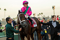 ARCADIA, CA  DECEMBER 26:  #1 City of Light, ridden by Drayden Van Dyke, in the winners circle after winning the Malibu Stakes (Grade l) on December 26, 2017 at Santa Anita Park in Arcadia, CA. (Photo by Casey Phillips/ Eclipse Sportswire/ Getty Images)