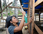 A woman constructs a temporary shelter for her family in Bacubac, a seaside neighborhood in Basey in the Philippines province of Samar that was hit hard by Typhoon Haiyan in November 2013. The storm was known locally as Yolanda. The ACT Alliance is helping the community to rebuild in the wake of the disaster.