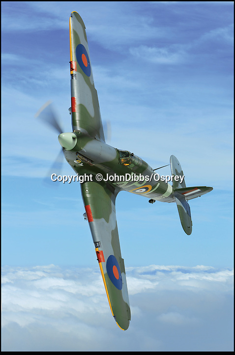 BNPS.co.uk (01202 558833)<br /> Pic: JohnDibbs/Osprey/BNPS<br /> <br /> Last of the Few - A photographer's stunning new book is a tribute to the last Hawker Hurricane's - the true workhorse of the Battle of Britain.<br /> <br /> Only 13 WW2 Hurricanes are still airworthy today, compared to over 60 of their more glamorous counterpart the Spitfire.<br /> <br /> But during the Battle of Britain there were in fact twice as many Hurricane's as Spitfires taking on Hitlers Luftwaffe in the skies over southern England.<br /> <br /> The Hurricane may be viewed as less glamorous than the Spitfire, but these stunning photographs reveal just how majestic it was in full flight.<br /> <br /> Photographer John Dibbs has got up close and personal to the legendary fighter planes in order to capture them like never before.<br /> <br /> His 10 year quest for surviving Hurricanes took him all over the world and he photographed them in England, France, the United States and New Zealand.<br /> <br /> Using the skill and experience of highly experienced RAF and civilian pilots, Mr Dibbs was able to fly to within 15ft of some of the last remaining Hurricanes - with breath-taking results.<br /> <br /> There was a fair degree of skill involved as he took the photos from the canopy of a Second World War trainer aircraft which was travelling at 200mph while confronting wind blast.<br /> <br /> The thrilling photos were taken for an a definitive history of the Hurricane which is told by Mr Dibbs and aviation historians Tony Holmes and Gordon Riley in their new book Hurricane, Hawker's Fighter Legend.