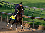 LOUISVILLE, KENTUCKY - APRIL 29: Long Range Toddy, trained by Steven Asmussen, exercises in preparation for the Kentucky Derby at Churchill Downs in Louisville, Kentucky on April 29, 2019. Scott Serio/Eclipse Sportswire/CSM