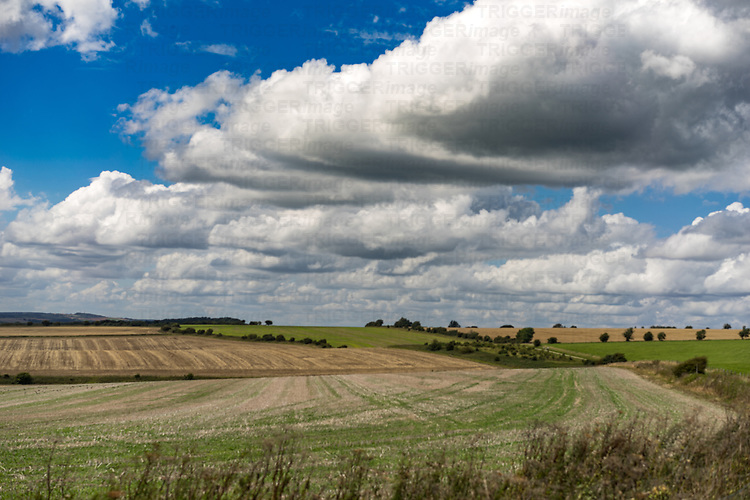 View from the top of the Soth Downs in West Sussex