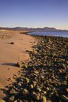 Morning light and rocks along the beach of Bahia de los Angeles at low tide, Baja California, Mexico