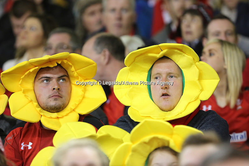 Pictured: Two men Wales supporters. Saturday 15 November 2014<br />