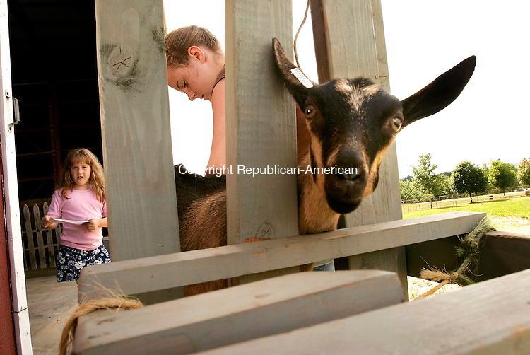GOSHEN, CT - 28 JULY 2005 -072805JS01-- Emily Holt, 16, of Higganum trims the hooves of her 3 month old Alpine goat 'Adobe' as her younger sister Elizabeth, 7, looks on as they set up and prepare for the start of Connecticut Agriculture Fair at the Goshen Fairgrounds. Holt will be showing 'Adobe' in the dairy goat show. The fair runs Friday July 29 through Sunday, July 31.  --Jim Shannon Photo-- are CQ