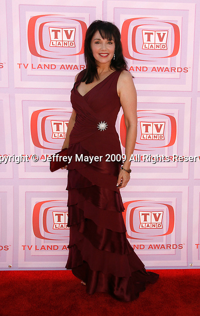 UNIVERSAL CITY, CA. - April 19: Stepfanie Kramer arrives at the 2009 TV Land Awards at the Gibson Amphitheatre on April 19, 2009 in Universal City, California.