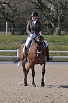 25/03/2016 - Class 3 - British Dressage - Brook Farm Training Centre
