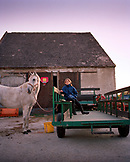 AUSTRIA, Podersdorf, a young girl Denise with her horse at her home, Burgenland
