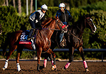 OCT 26: Breeders' Cup Sprint entrant Landeskog, trained by Doug F. O'Neill,  works out at Santa Anita Park in Arcadia, California on Oct 26, 2019. Evers/Eclipse Sportswire/Breeders' Cup