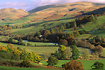Autumn landscape Annandale looking up to a mist topped Hart Fell in the Moffat Hills Dumfries and Galloway Scotland UK
