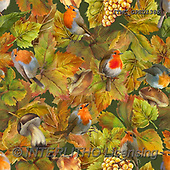 Marcello, GIFT WRAPS, GESCHENKPAPIER, PAPEL DE REGALO, paintings+++++,ITMCGPED1386,#GP#, EVERYDAY,autumn leaves,red robin