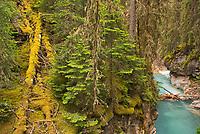 Johnston Canyon<br />Banff National Park<br />Alberta<br />Canada