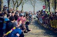 101th Ronde Van Vlaanderen 2017 (1.UWT)<br /> 1day race: Antwerp › Oudenaarde - BEL (260km)