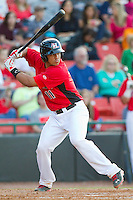 Jorge Alfaro (11) of the Hickory Crawdads at bat against the Kannapolis Intimidators at L.P. Frans Stadium on May 25, 2013 in Hickory, North Carolina.  The Crawdads defeated the Intimidators 14-3.  (Brian Westerholt/Four Seam Images)