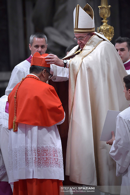 cardinal, archbishop of Kuala Lumpur in Malaysia, Anthony Soter Fernandez,  during a consistory at Peter's basilica. Pope Francis has named 17 new cardinals, on November 19, 2016
