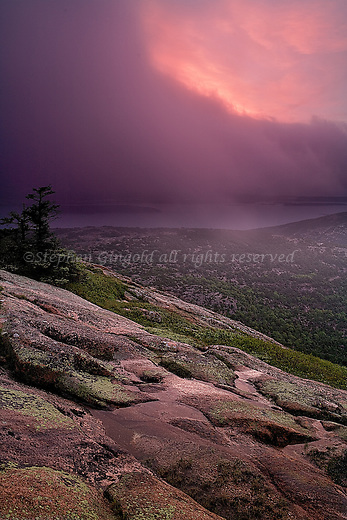 As the sun rises behind a wall of fog, the dawn glows in magenta hues on Cadillac Mountain in Acadia National Park.
