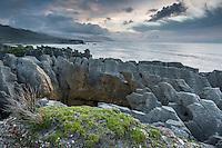 Limestone formations, pancake rocks in Punakaiki, Paparoa National Park, Buller Region, West Coast, New Zealand