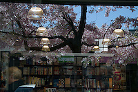 Palmerston North<br /> Photo by Masanori Udagawa<br /> www.photowellington.com