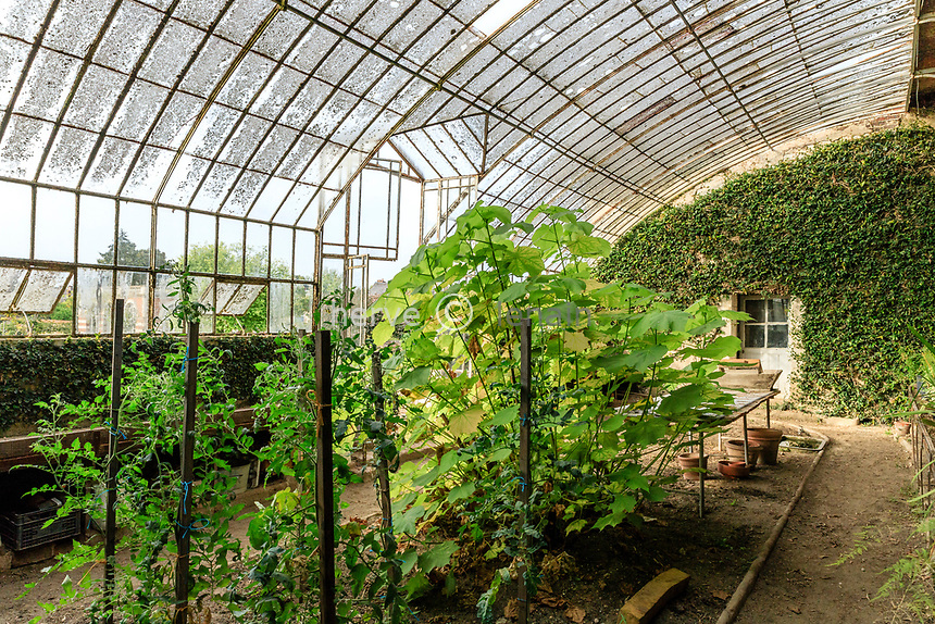 France, Sarthe (72), Le Lude, château et jardins du Lude, le potager, serre adossée