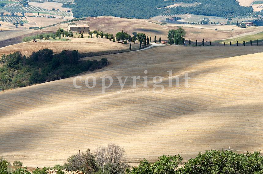 Tuscanian landscape near to Pienza, Tuscany, Italy, Europe