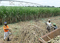 OZAMBIQUE, Lamego, BAGC Beira agricultural growth corridor, 450 hectares sugar cane plantation of south african company Tongaat Hulett, the sugar is processed in a sugar factory in Mafambisse, Pivot circular irrigation system / MOSAMBIK, Lamego, BAGC Beira agricultural growth corridor, 450 Hektar Zuckerrohr Farm der suedafrikanischen Firma Tonga Hulett, Pivot Kreis Bewaesserungsanlage