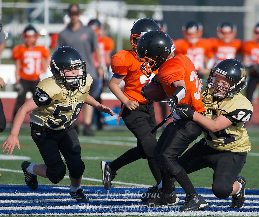 North Langley Bears vs Royal City Hyacks Pee Wee Golden Helmet Tournament