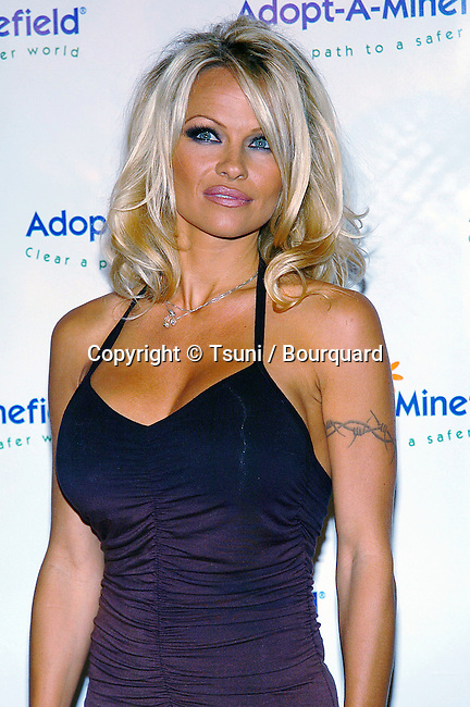 Pamela Anderson arriving at the 4th Annual Benefit Gala for Adopt-A-Minefield at the Century Plaza Hotel in Los Angeles. october 15, 2004.