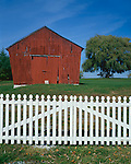 Pleasant Hill, KY: White picket fence, red barn & willow tree in this Shaker Village