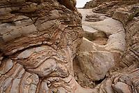 , Big Bend National Park, West Texas, USA