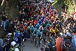 The peloton climb to Recanati during Stage 5 of the Race of the Two Seas, the 54th Tirreno-Adriatico 2019, running 180km from Colli al Matauro to Recanati, Italy. 17th March 2019.<br /> Picture: LaPresse/Fabio Ferrari | Cyclefile<br /> <br /> <br /> All photos usage must carry mandatory copyright credit (© Cyclefile | LaPresse/Fabio Ferrari)