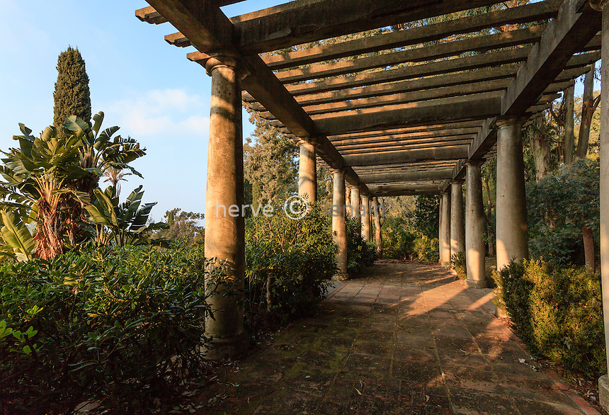 Le domaine du Rayol en f&eacute;vrier : la pergola.<br /> <br /> (mention obligatoire du nom du jardin &amp; pas d'usage publicitaire sans autorisation pr&eacute;alable)