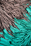 Gray Silk Blue Silk - Turquoise blue and gray layered silk shawls.