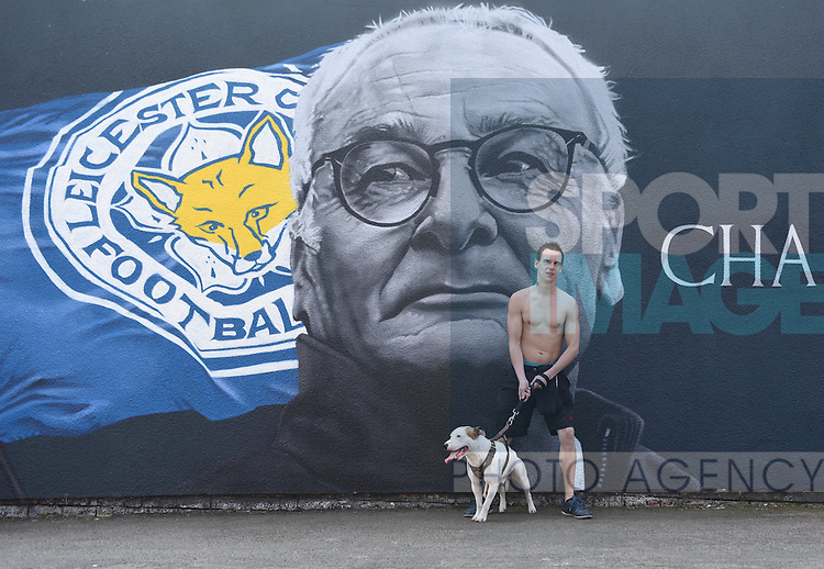 Leicester city fan and his bulldog visits the painted wall of Leicester city manger Claudio Ranieri, in Leicester, England. Photo credit should read: Nathan Stirk/Sportimage<br /> <br /> <br /> <br /> <br /> <br /> <br /> <br /> <br /> <br /> <br /> <br /> <br /> <br /> <br /> <br /> <br /> <br /> <br /> <br /> <br /> <br /> <br /> <br /> <br /> <br /> <br /> <br /> <br /> <br /> <br /> <br /> <br /> - Newcastle Utd vs Tottenham - St James' Park Stadium - Newcastle Upon Tyne - England - 19th April 2015 - Picture Phil Oldham/Sportimage